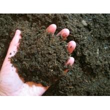 重庆腐殖土厂家不易板结绿化工程价格合理